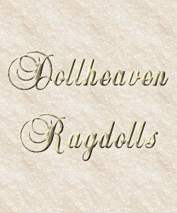 Dollheaven Ragdolls Graphic